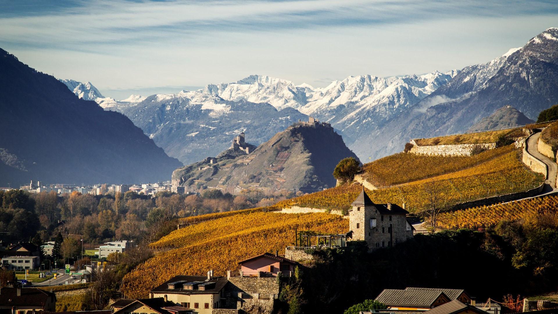 Dégustation de vins à Verbier en Valais
